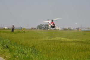 4~5月には、麦の赤かび病予防のための防除を無人ヘリで行っています。6月の収穫に向けた大切な作業です。