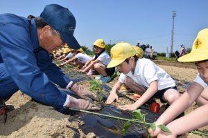 野菜苗を定植する福地南部小学校2年生児童(右)と指導する農業塾生(左)