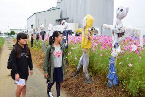 コスモス畑には市内の小学生が作った180体のかかしが並んだ