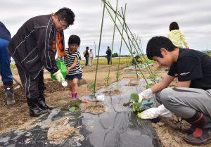 協力して野菜作りに取り組む参加家族