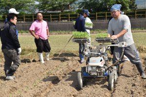 トウモロコシの苗を植え付ける部員ら